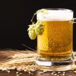 Come si produce la birra? Dagli ingredienti all'imbottigliatura: tutto il processo di produzione passo dopo passo