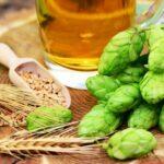 Birra artigianale: come viene prodotta, dove acquistarla e come puoi farla a casa
