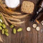 I 4 ingredienti della birra: cereali, luppolo, lievito e acqua. Ecco le loro caratteristiche
